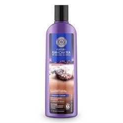 Натура Камчатка Шампунь Северное сияние Очищение и свежесть волос Natura Siberica 280 мл - фото 5550