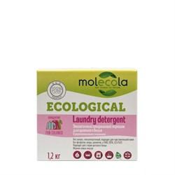 Molecola Стиральный порошок для цветного белья с растительными экзимами 1,2 кг - фото 6337